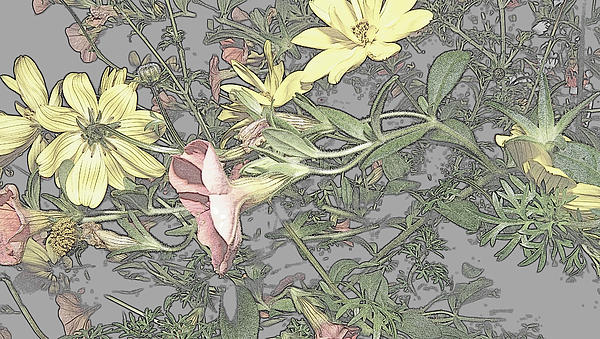 Spring Blossoms In Abstract Print by Kim Galluzzo Wozniak