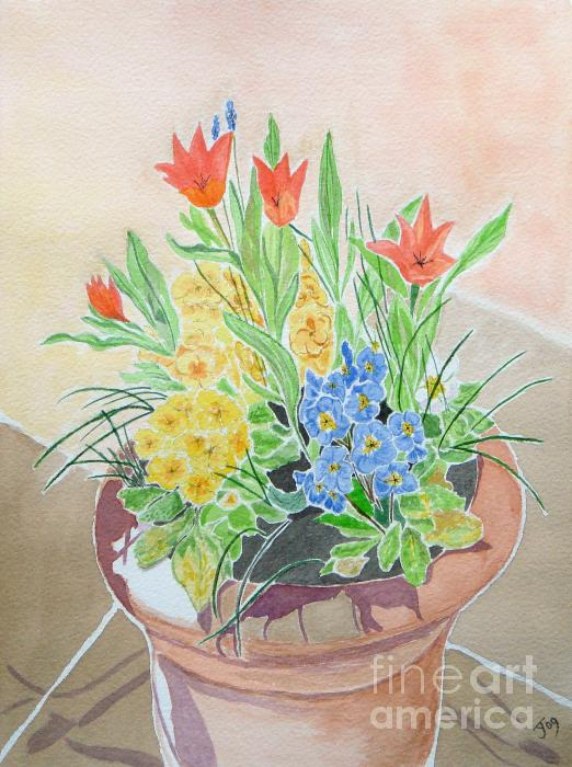 Spring Flowers In Pot Painting  - Spring Flowers In Pot Fine Art Print