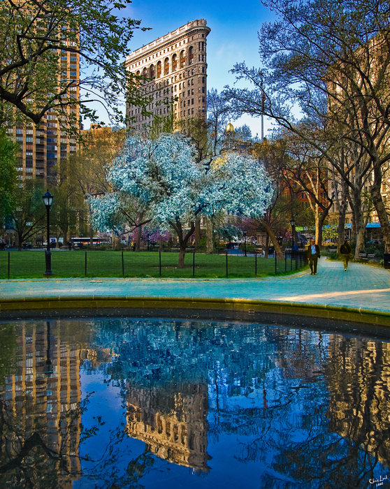 Spring In Madison Square Park Print by Chris Lord