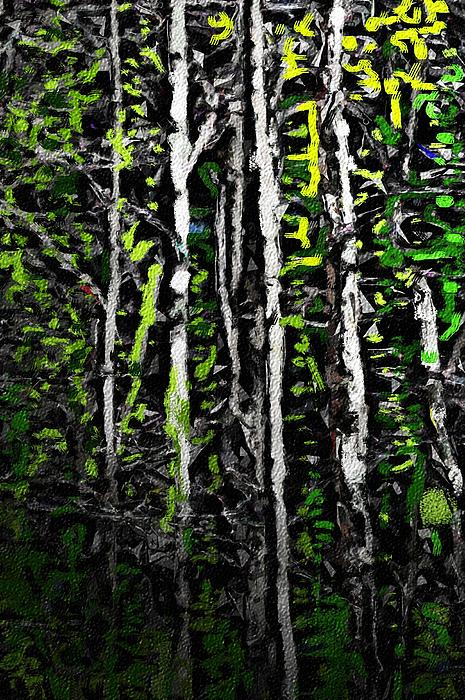 Spring in the Woods II Digital Art