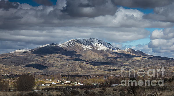Spring Snow Print by Robert Bales