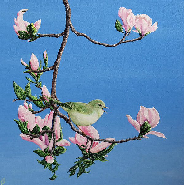 Spring Songster Print by Paul Parsons