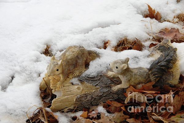 Squirrels In Winter Print by Bill Hyde