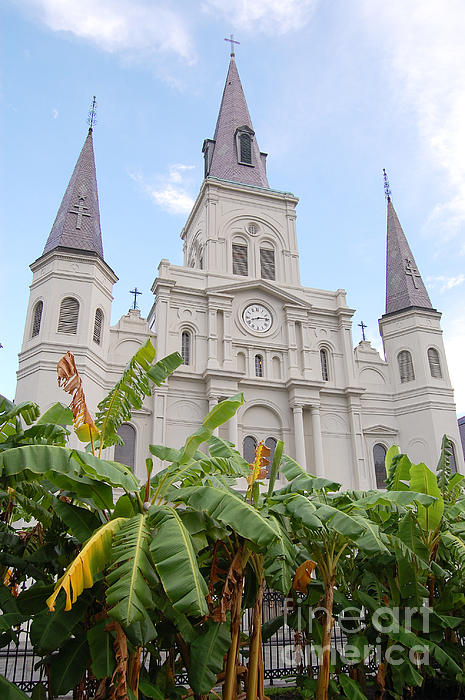 St Louis Cathedral Rising Above Palms Jackson Square French Quarter New Orleans Print Print by Shawn O'Brien