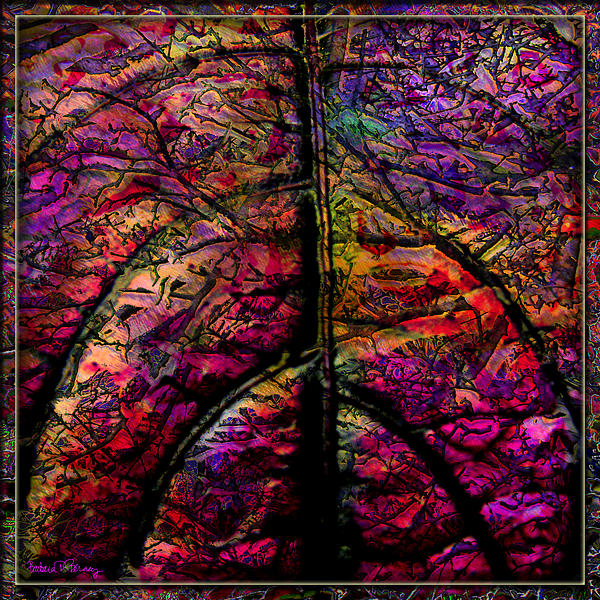 Stained Glass Not Print by Barbara Berney