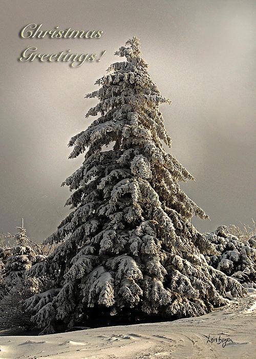 Standing Tall Christmas Card Print by Lois Bryan