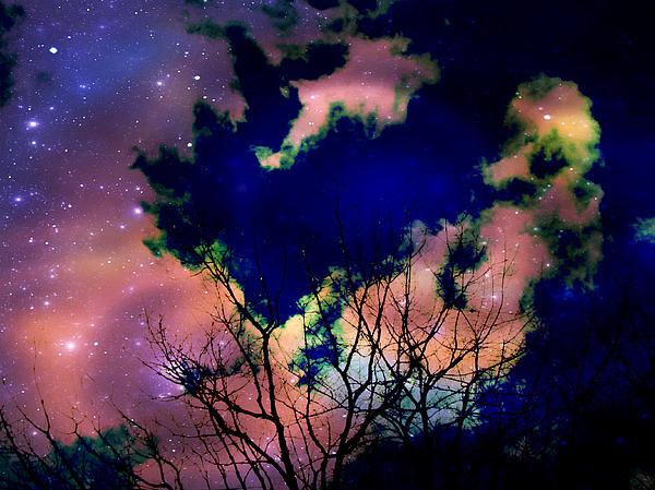 Lisa Jayne Konopka - Star light