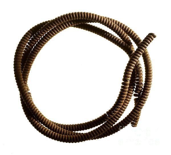 Steel Cable Print by Tony Cordoza