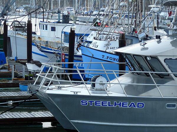 Steelhead And Fishing Boats Print by Jeff Lowe