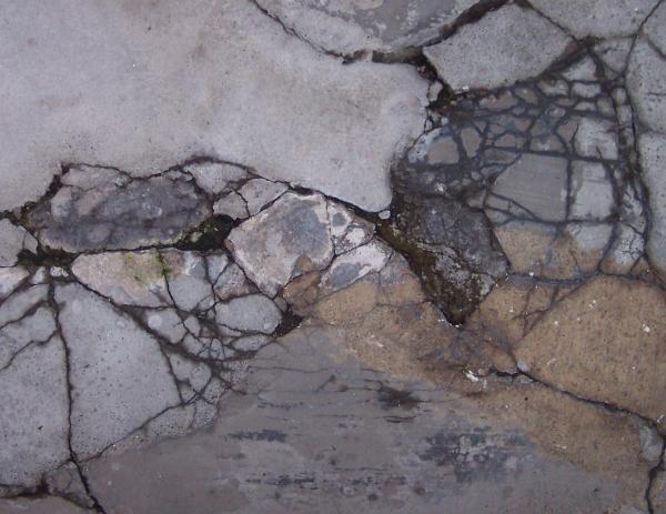 Step On A Crack 2 Print by Anna Villarreal Garbis
