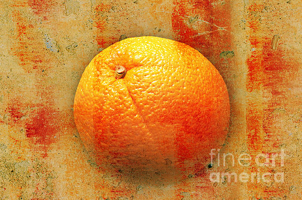 Still Life Orange Abstract Print by Andee Design