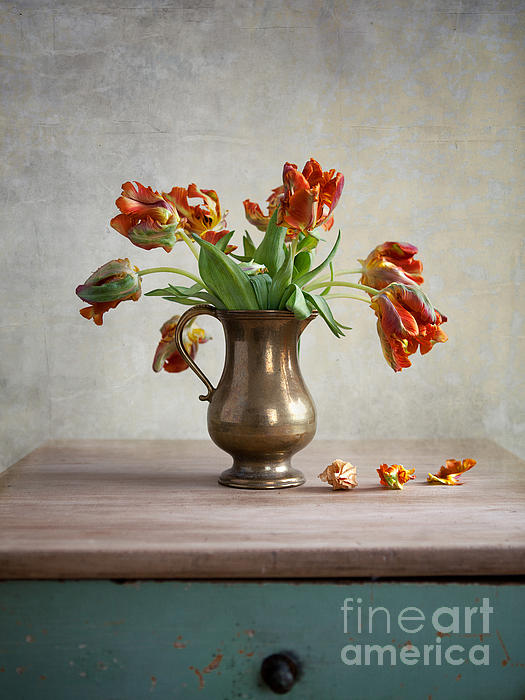 Still Life With Tulips Print by Nailia Schwarz