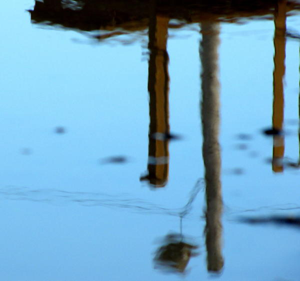 Stockyard Puddle No. 13 Photograph  - Stockyard Puddle No. 13 Fine Art Print