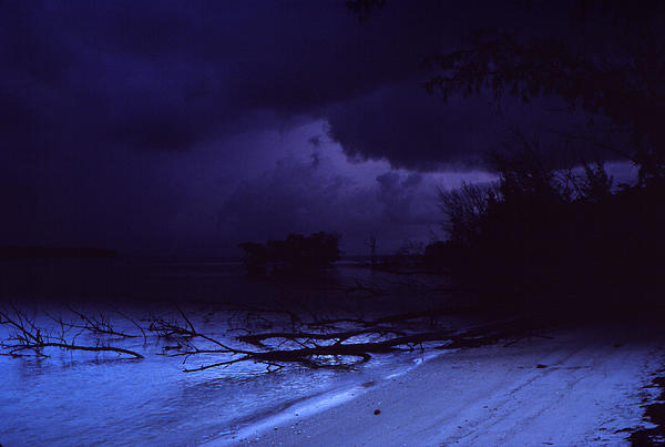 Storm At Dawn Print by Bob Whitt