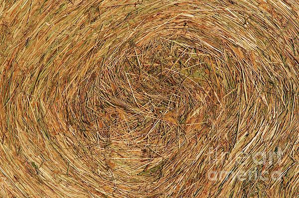Straw Print by Michal Boubin