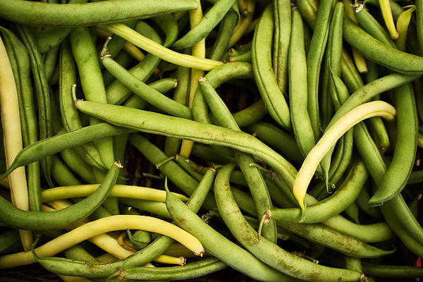 String Beans Print by Tanya Harrison