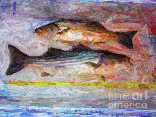 Striped Bass Keepers Print by Wingsdomain Art and Photography