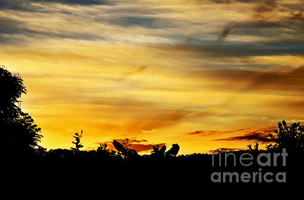 Stripey Sunset Silhouette Print by Kaye Menner