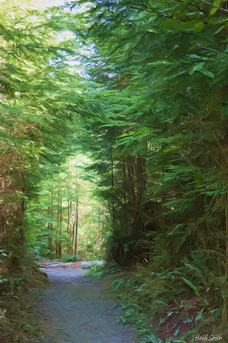 Heidi Smith - Stroll Through The Quinault Rain Forest