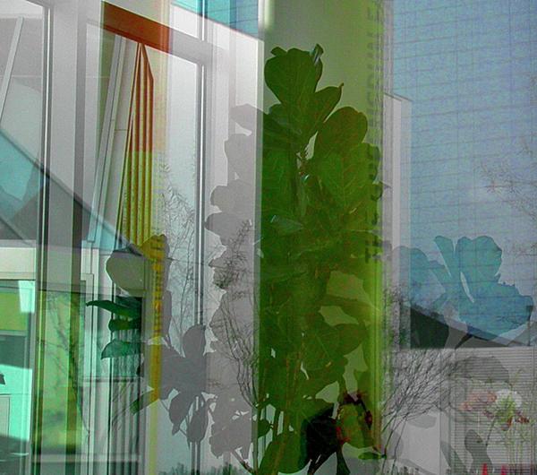Subtle Reflections Print by Nabila Khanam