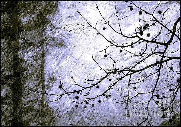 Sudden Snowstorm Print by Judi Bagwell