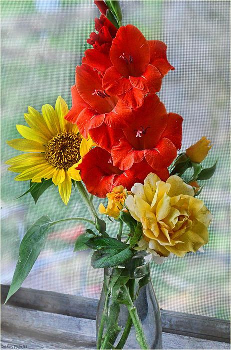 Summer Floral Print by Debbie Portwood