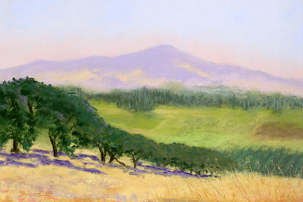 Summer Haze Print by Janet Biondi