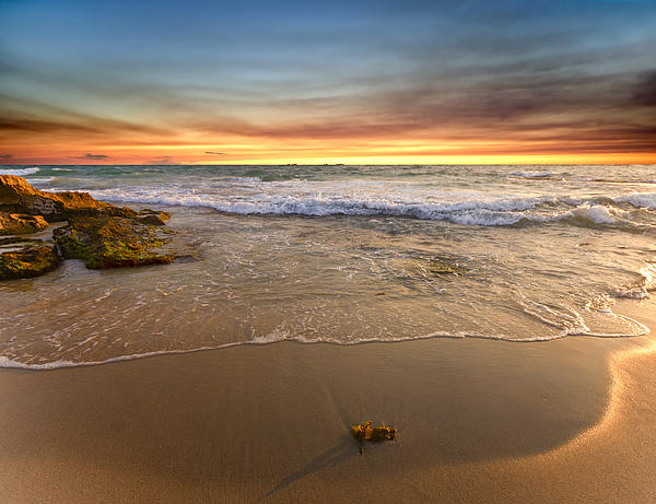 Imagevixen Photography - Sun Glow