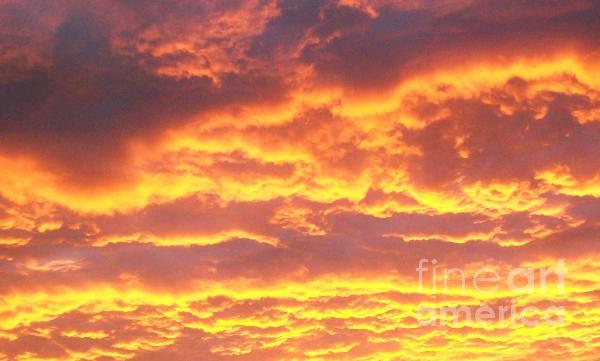 Sun On The Clouds Print by Marsha Heiken