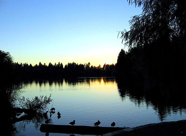Sundown At Lost Lagoon Print by Will Borden