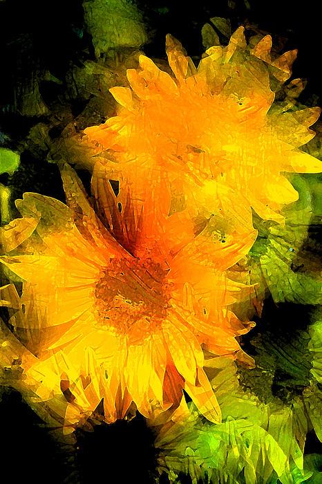 Sunflower 2 Print by Pamela Cooper