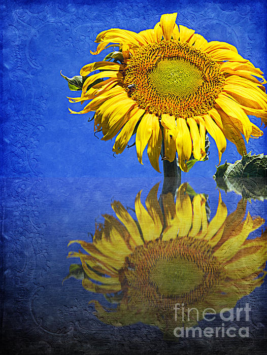 Andee Design - Sunflower Reflection