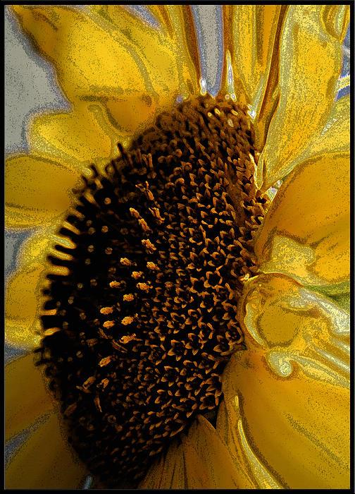 Lou Belcher - Sunflower Side