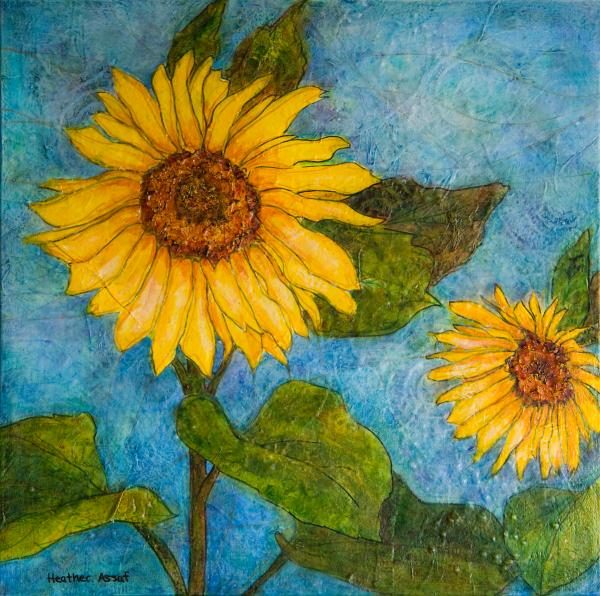Heather Assaf - Sunflowers