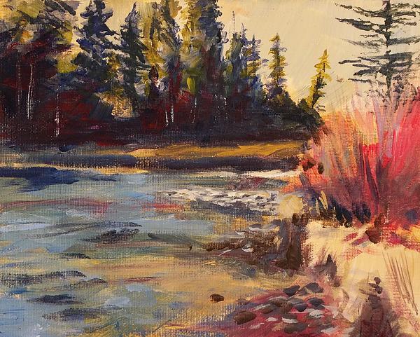 Sunny Colorado Wooded Stream Print by Walt Maes