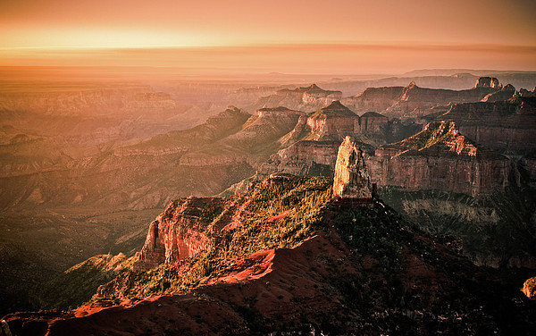 Sunrise At Point Imperial, Grand Canyon North Rim Print by California CPA