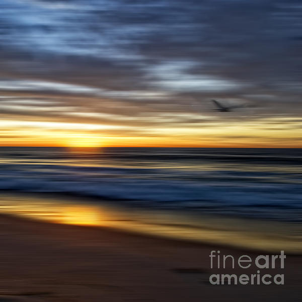 Sunrise Over The Ocean Print by Diane Metz