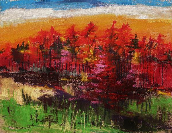 Sunrise Pastel John Williams Print by John  Williams
