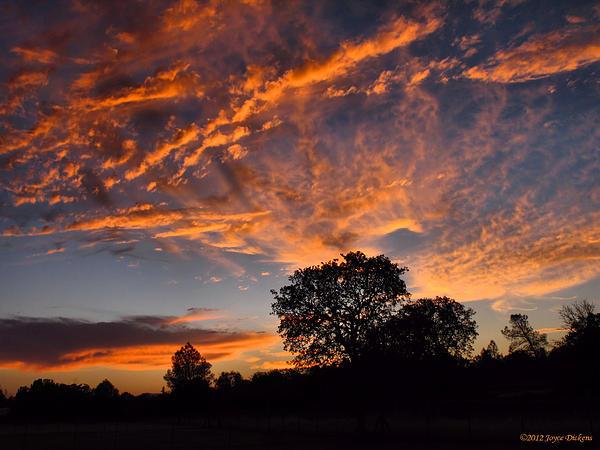 Joyce Dickens - Sunset 07 26 12
