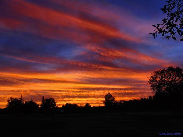 Joyce Dickens - Sunset 2   09 22 12