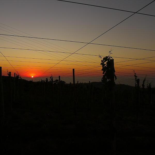Sunset 3 Photograph