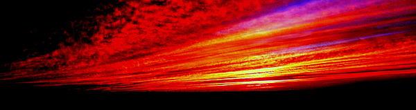 Antonia Citrino - Sunset Ablaze
