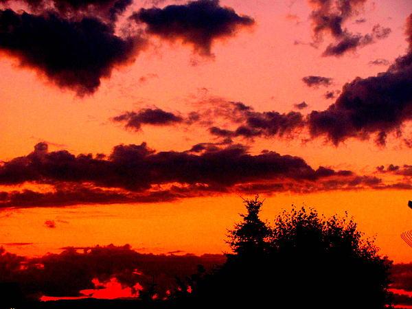 Amy Bradley - Sunset