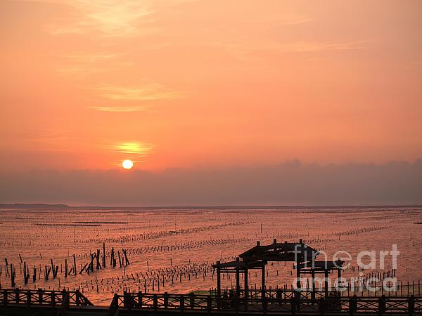 Sunset At Cigu Bay Print by Yali Shi
