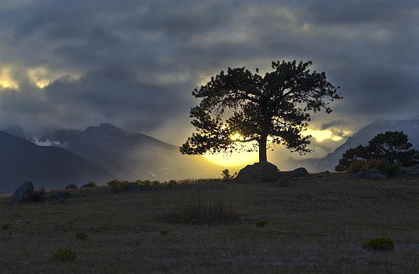 Sunset At Rocky Mountain Park Co Print by James Steele