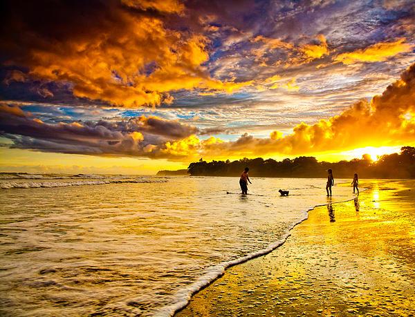 Iris Greenwell - Sunset at the Coast