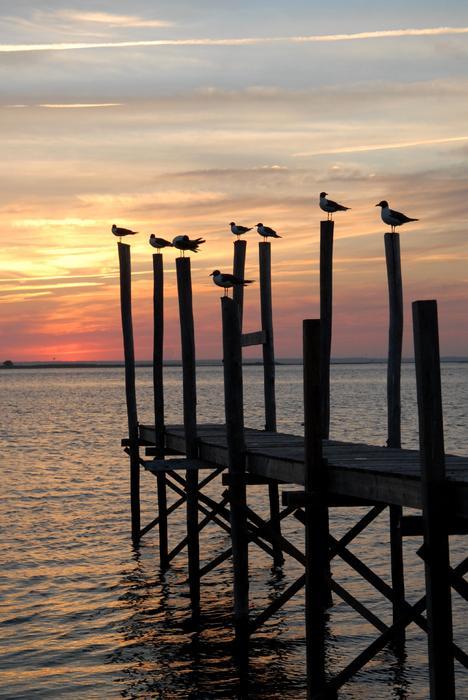 Sunset Bay 27 Print by Joyce StJames
