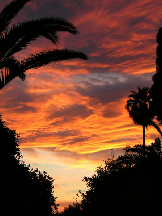 Sunset God's Fingers In Clouds  Print by Diane  Greco-Lesser