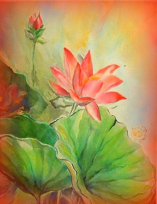 Wendy Wiese - Sunset On Lotus