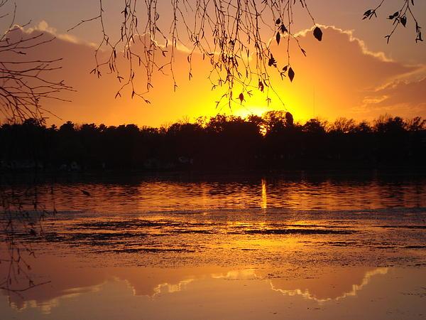 James Hammen - Sunset on Rice Lake